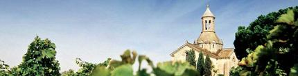 DOMAINE LE PIVE, Rouge BIO - Vignobles Jeanjean